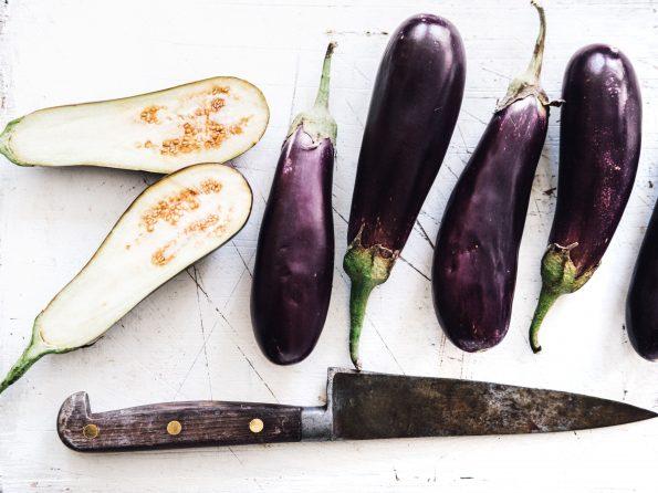 Eggplant – ca tim