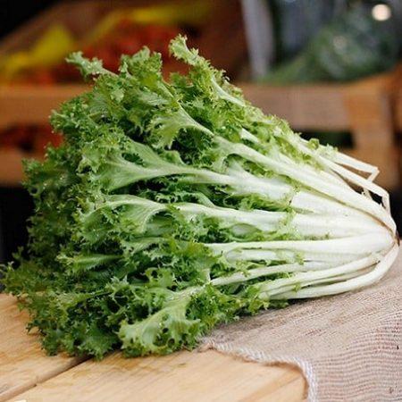 Xa lach xoan xanh - frise salad