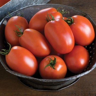cherry tomato – Ca chua cherry do