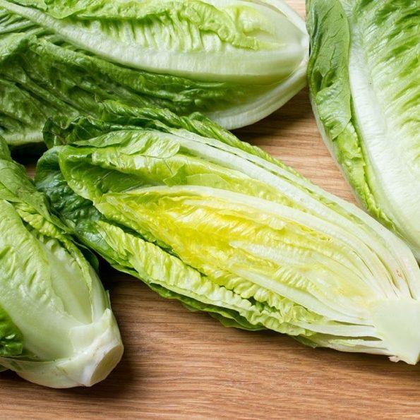 romaine-lettuce – Xa lach Romaine Da Lat