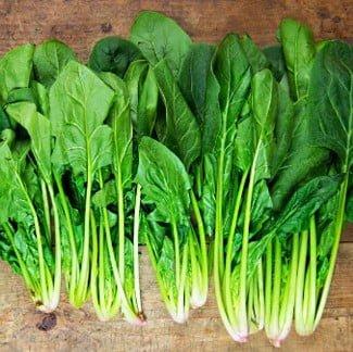 cải bó xôi - spinach