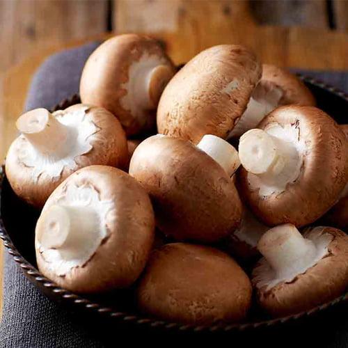 Mushroom-Brown-Button