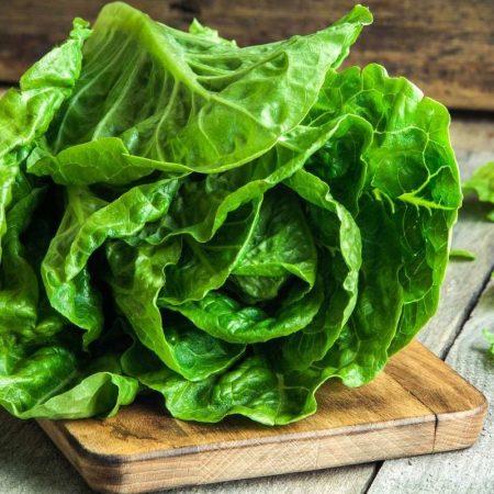 Xa Lach Romaine - Romaine lettuce - Santorino Veggie box