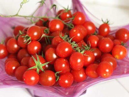 Giá trị dinh dưỡng của cà chua bi - Santorino Coffee & Veggies