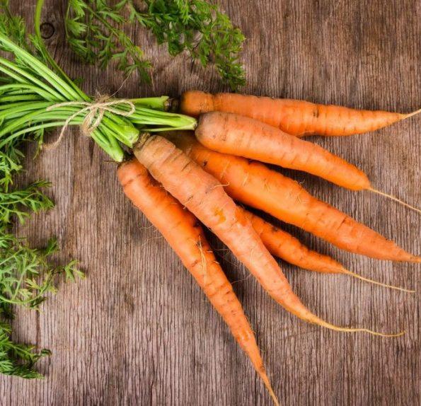 da lat carrot cu qua sach