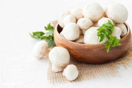 5 công dụng tuyệt vời mà chỉ nấm mỡ trắng mới có - Santorino Coffee & Veggies