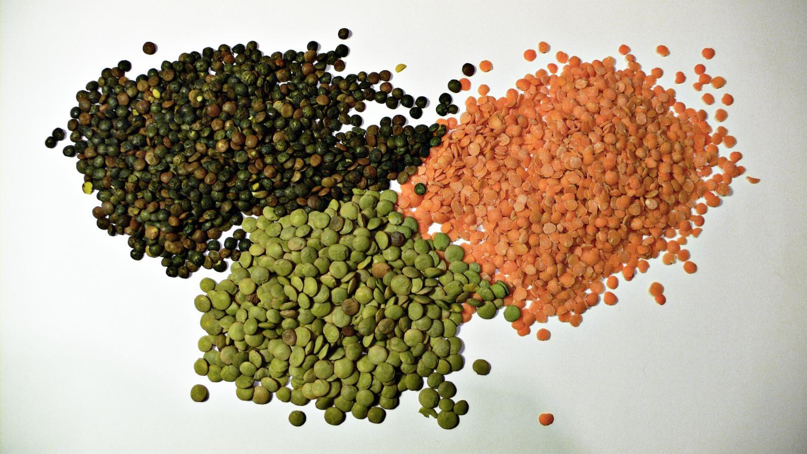 lentil santorino coffee & veggies