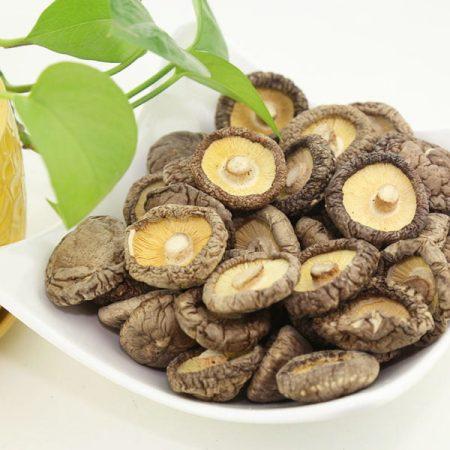 nấm hương santorino