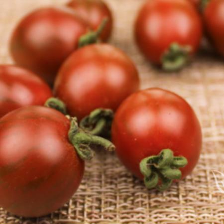 chocolate tomato