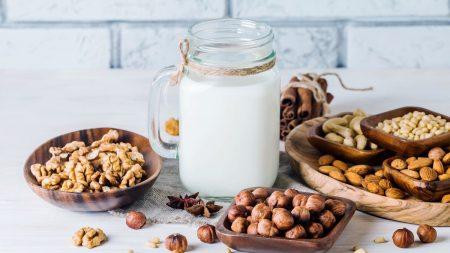 sữa hạt điều - santorino.org