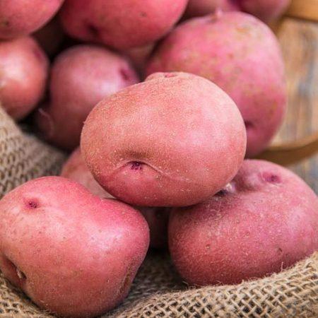 Khoai tây đỏ - Lady Rosetta Potato