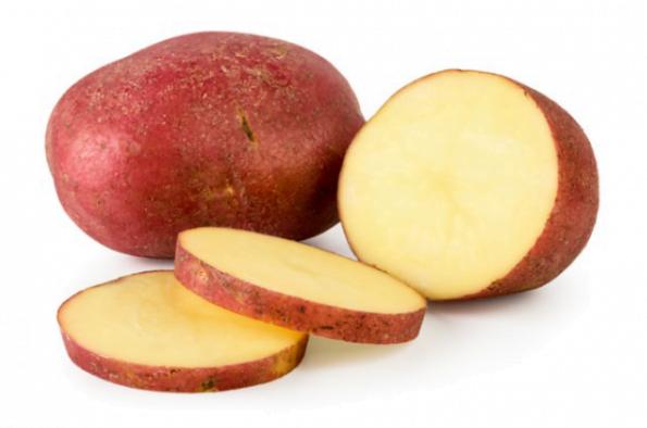 Khoai tây đỏ – red-potato