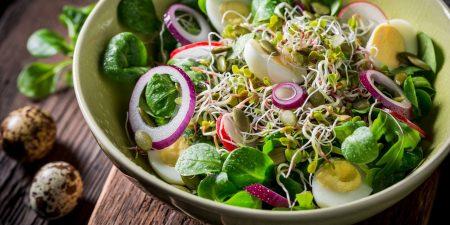 salad cá ngừ-santorino.org