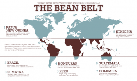 hạt cà phê - the bean belt