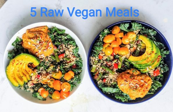 Santorino 5 raw vegan meals