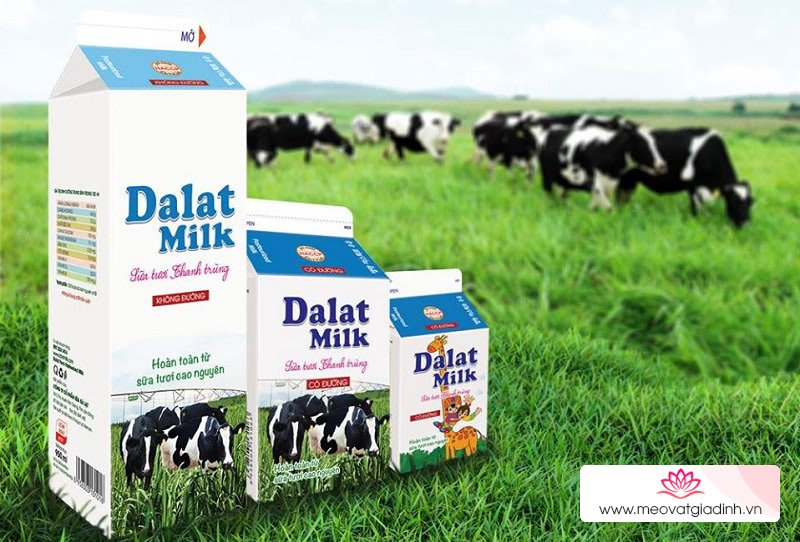 Sua tuoi thanh trung Dalat milk