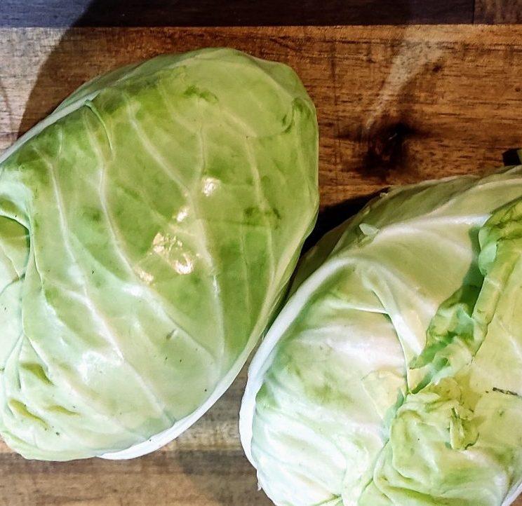 Bắp cải tim Đà lạt sú tìm pointed cabbage